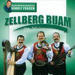 stars der volksmusik prasentiert von arnulf prasch - zellberg buam