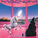 vigilante - magnum