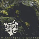 midnattens widunder - finntroll