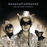 my private rainbow - bananafishbones