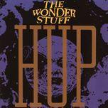 hup - the wonder stuff