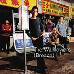 breach - the wallflowers
