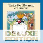 tea for the tillerman (deluxe edition) - cat stevens