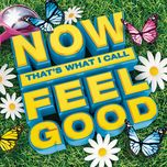 now that's what i call feel good - v.a