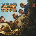 pyschotic reaction - count five
