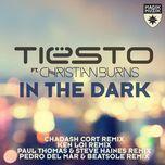 in the dark (remixes ep) - tiesto, christian burns