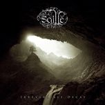 irreversible decay - saille