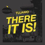 there it is (remixes ep) - tujamo