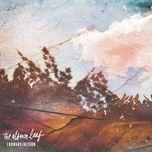 forward/return (ep) - the album leaf