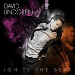 ignite the beat - david lindgren