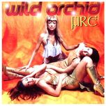 fire - wild orchid