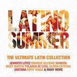 latino summer (2cd) - v.a