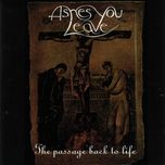 the passage back to life - ashes you leave