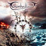 dawnfall - trophallaxy