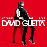 nothing but the beat (us edition) - david guetta