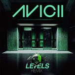levels (remixes) - avicii