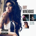the album collection - amy winehouse