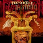 the gathering - testament