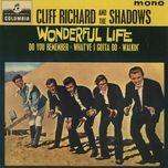 wonderful life - the shadows, cliff richard