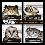 nature's greatest mystery (debut album) - the four owls
