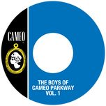the boys of cameo parkway (vol. 1) - v.a