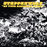 at your birthday party - steppenwolf