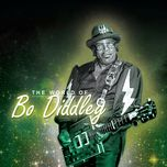the world of bo diddley - bo diddley