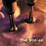 frosting on the beater - the posies