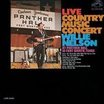 live country music concert - willie nelson