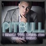i know you want me (calle ocho) (ep) - pitbull