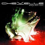 wonder what's next (deluxe version) - chevelle