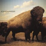 harder (single) - kosheen