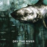 shallow bed (deluxe version) - dry the river