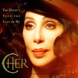 you haven't seen the last of me (almighty dub) - cher