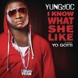 i know what she like (single) - yung joc, yo gotti