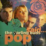 pop said... - the darling buds