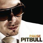 pause (single) - pitbull