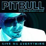 give me everything (the remixes) - pitbull