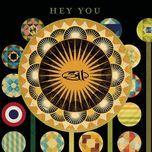 hey you (single) - 311