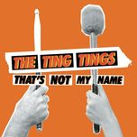 that's not my name (single) - the ting tings