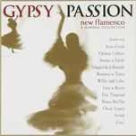 gypsy passion-new flamenco - v.a