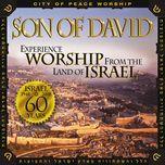 son of david - v.a