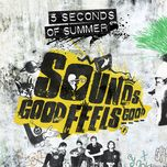 fly away (single) - 5 seconds of summer