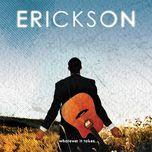whatever it takes - erickson