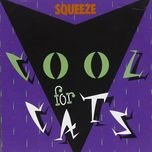 cool for cats - squeeze