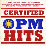 certified opm hits - v.a
