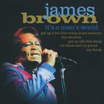 it's a man's world - james brown
