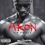 trouble (deluxe edition) - akon