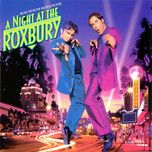 a night at the roxbury - v.a