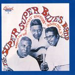 the super, super blues band - bo diddley, muddy waters, howlin' wolf